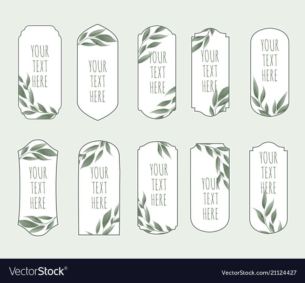 Set vintage labels with green leaves