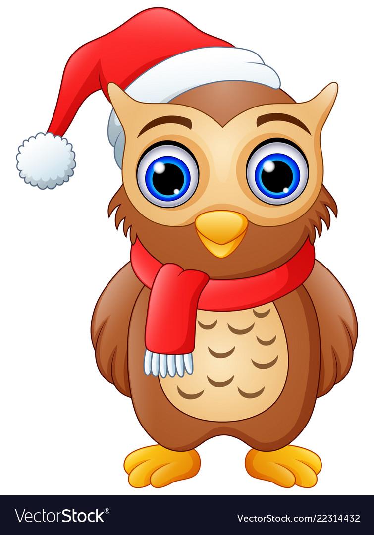 Cartoon owl wearing santa hat