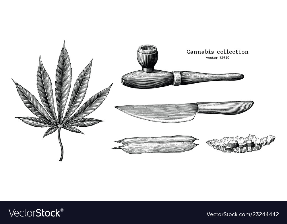 Cannabis collection hand draw vintage clip art