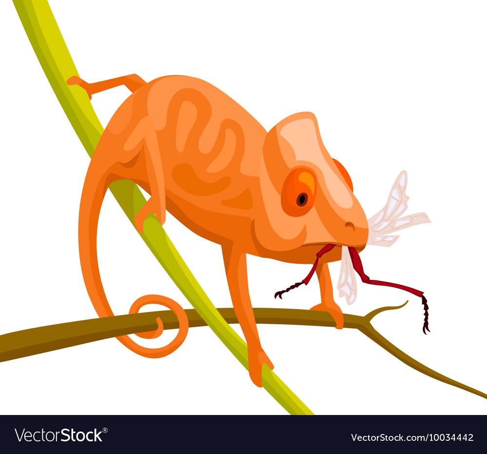 Orange cartoon chameleon