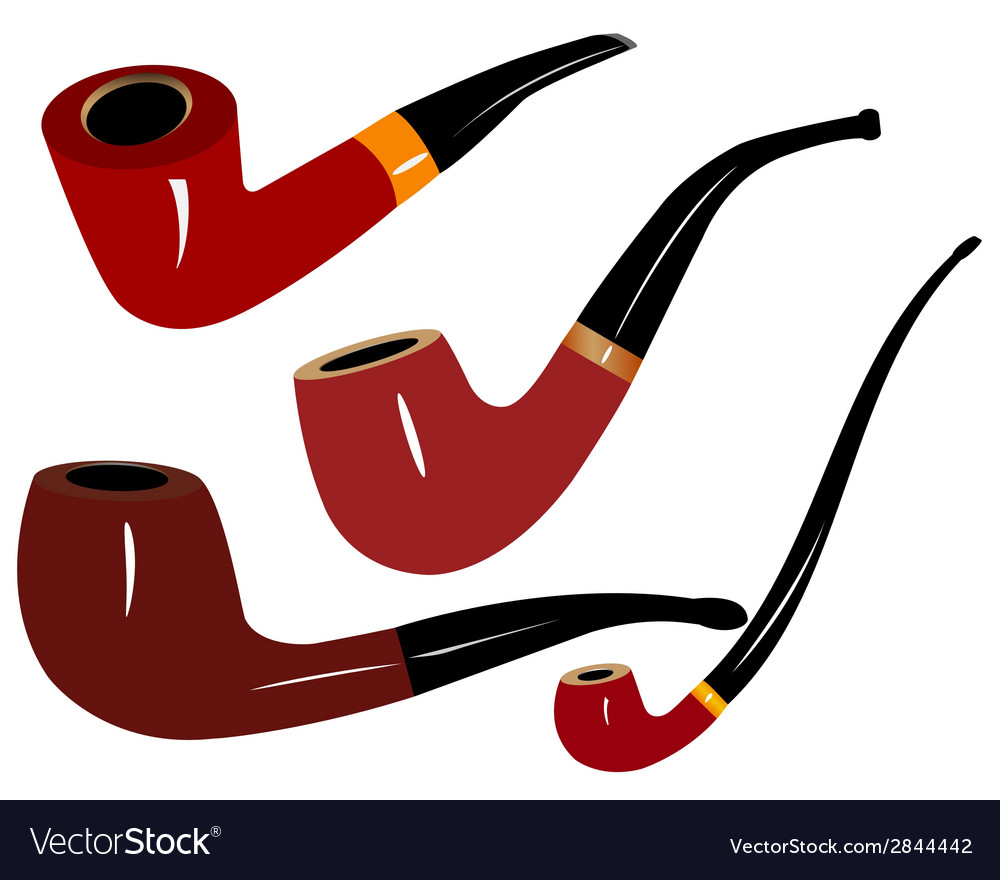 Tobacco pipes vector image