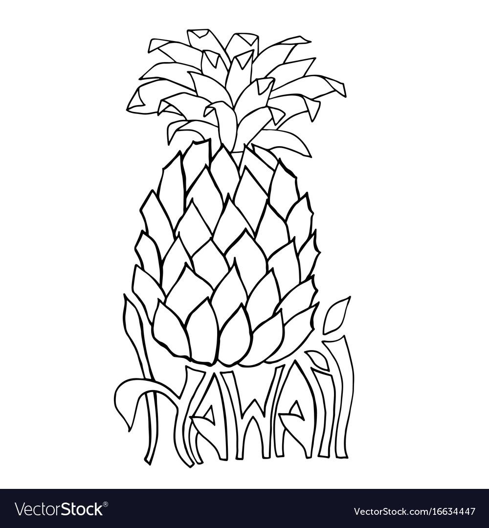Hawaii typography banner pineapple sketch