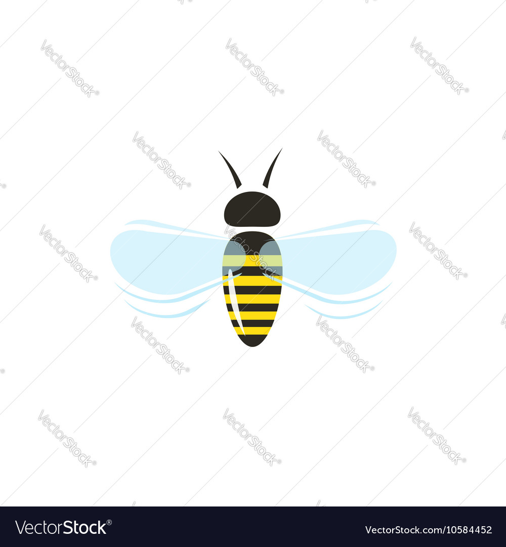 Bee flying icon isolated on white