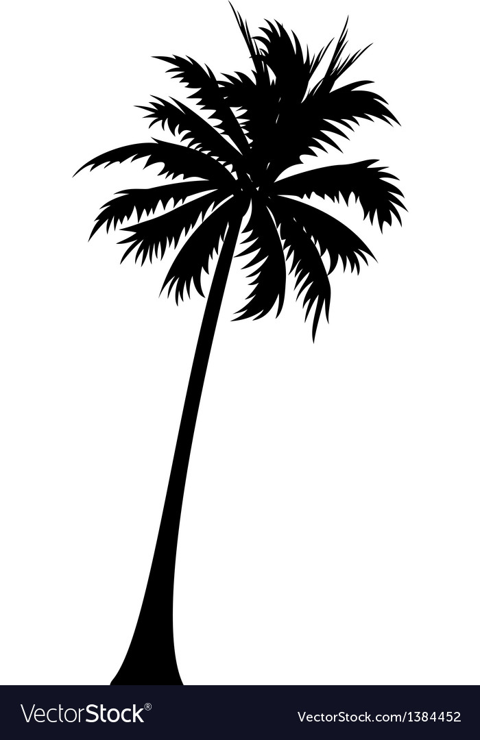 icon palm tree royalty free vector image vectorstock rh vectorstock com palm tree vector silhouette palm tree vector silhouette