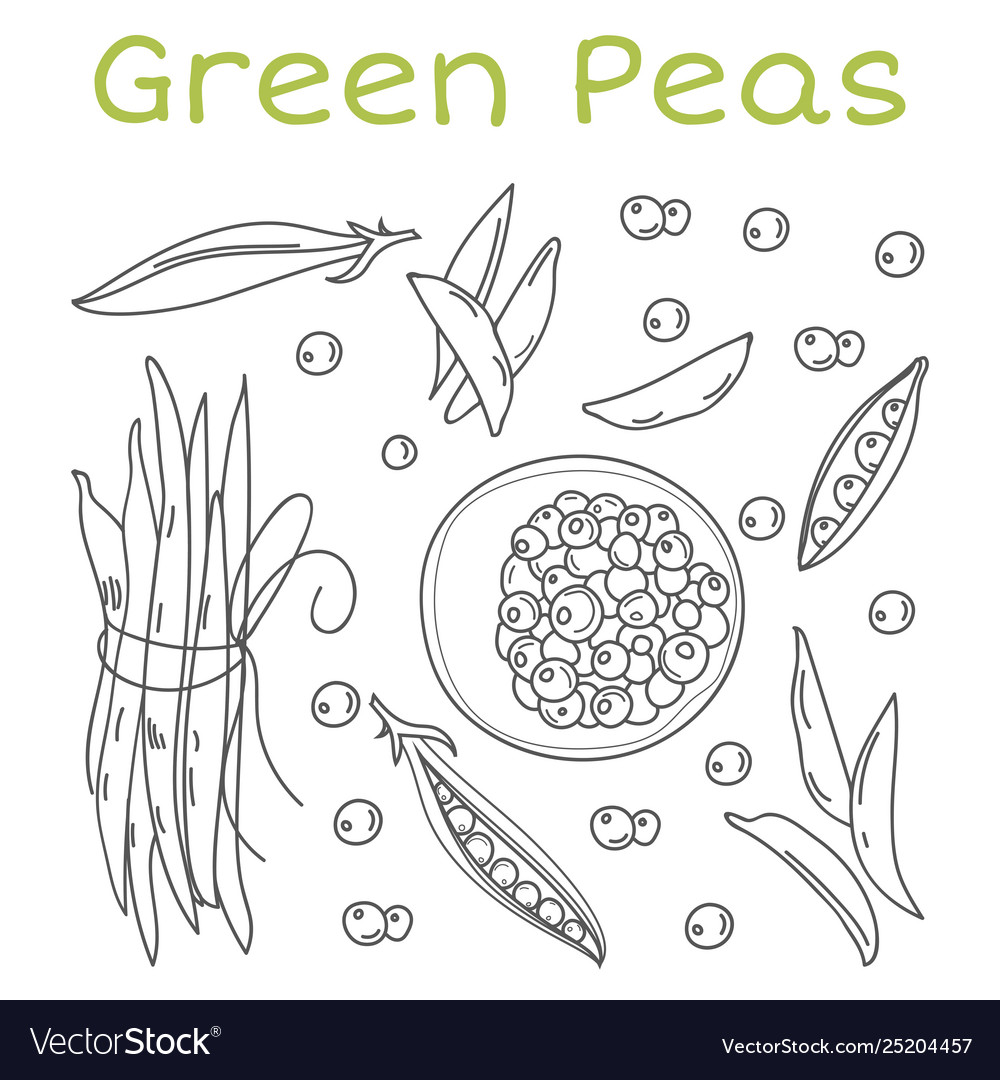 Pea pods and pods vintage