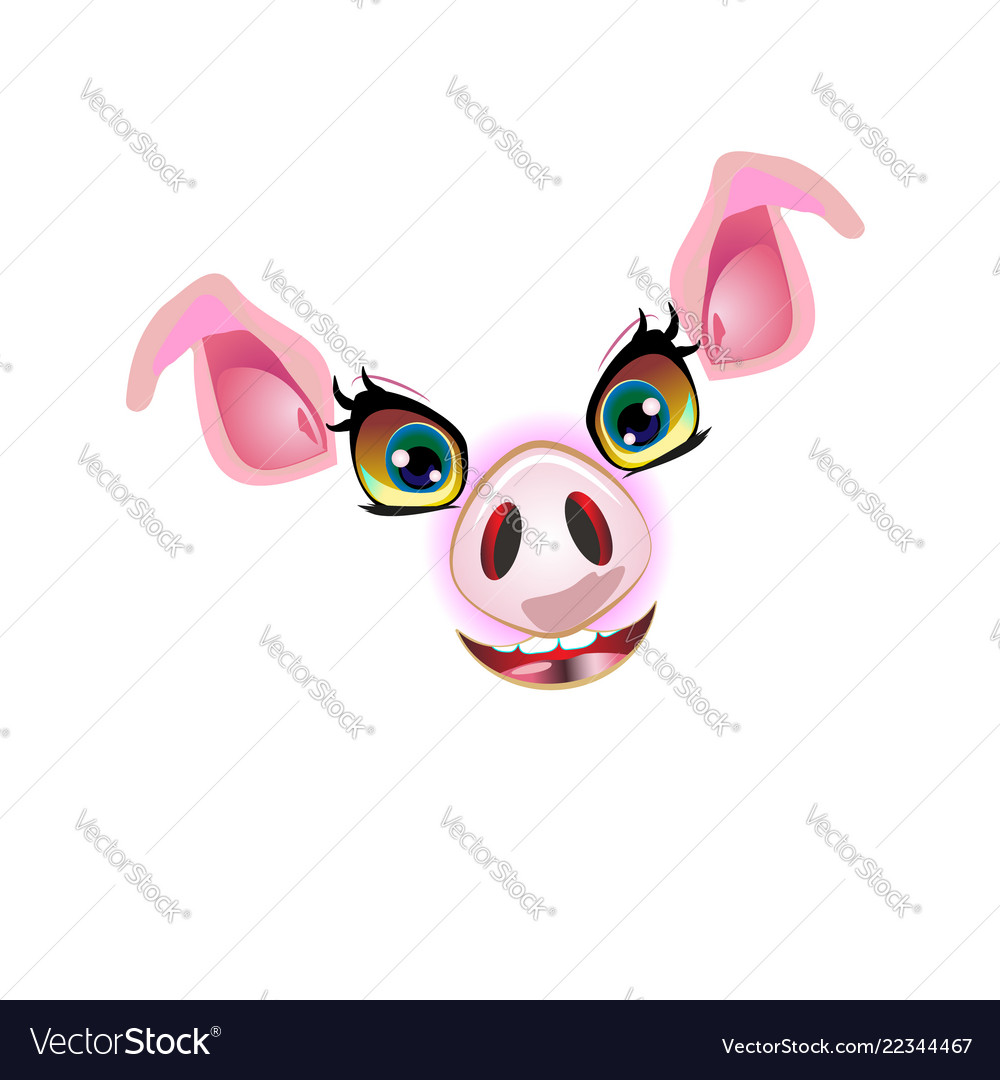 Cute pig face muzzle for decorated