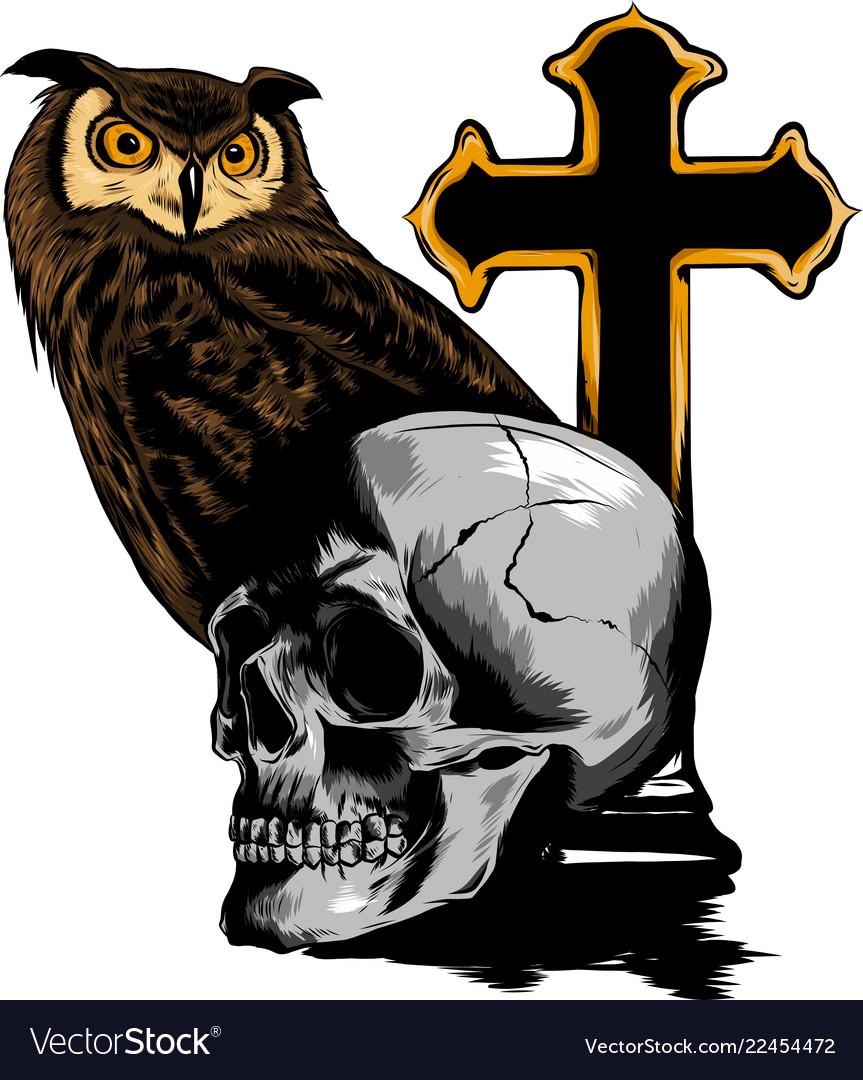 Illestation drawing of owl holding skull