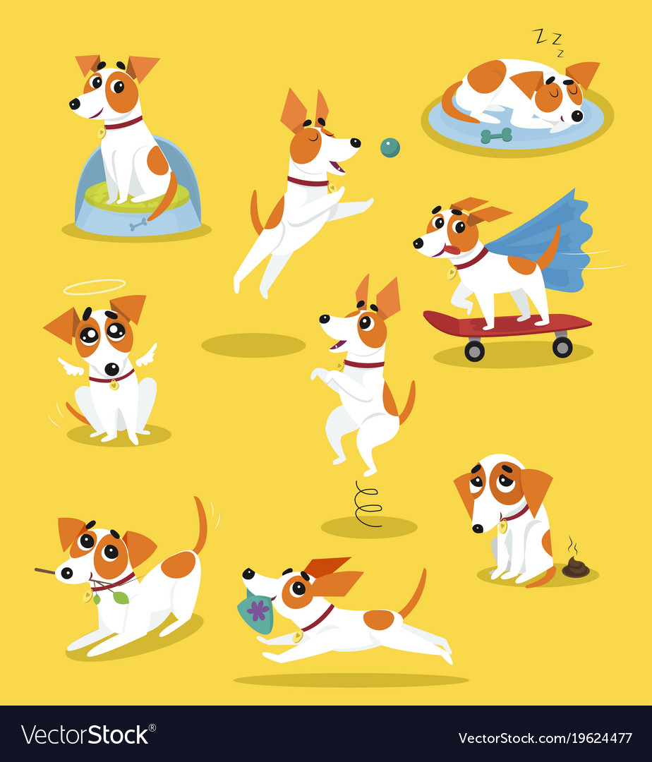 Cute jack russell terrier set funny pet dog
