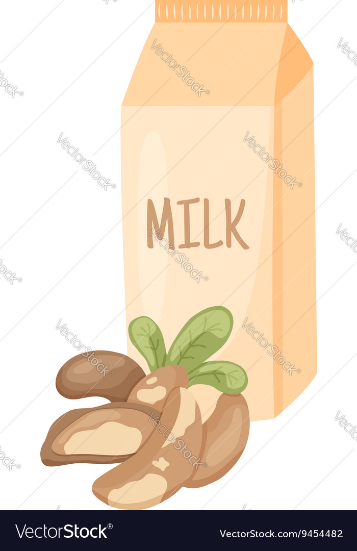Brazilian nut milk