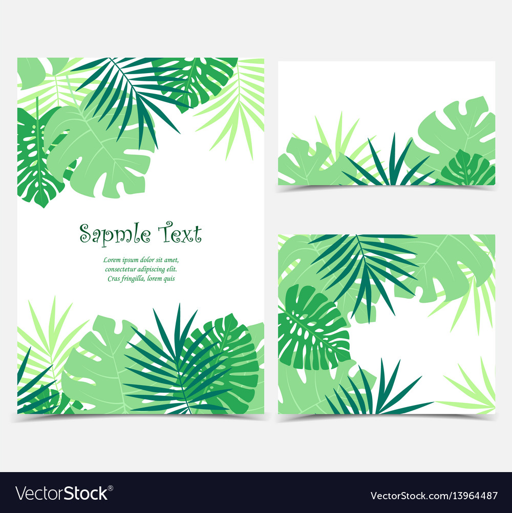 Palm leaves backgrounds vector image
