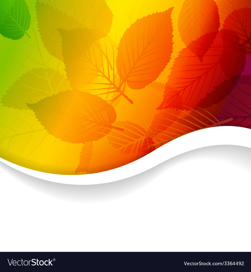 Autumn abstract rainbow floral background vector image