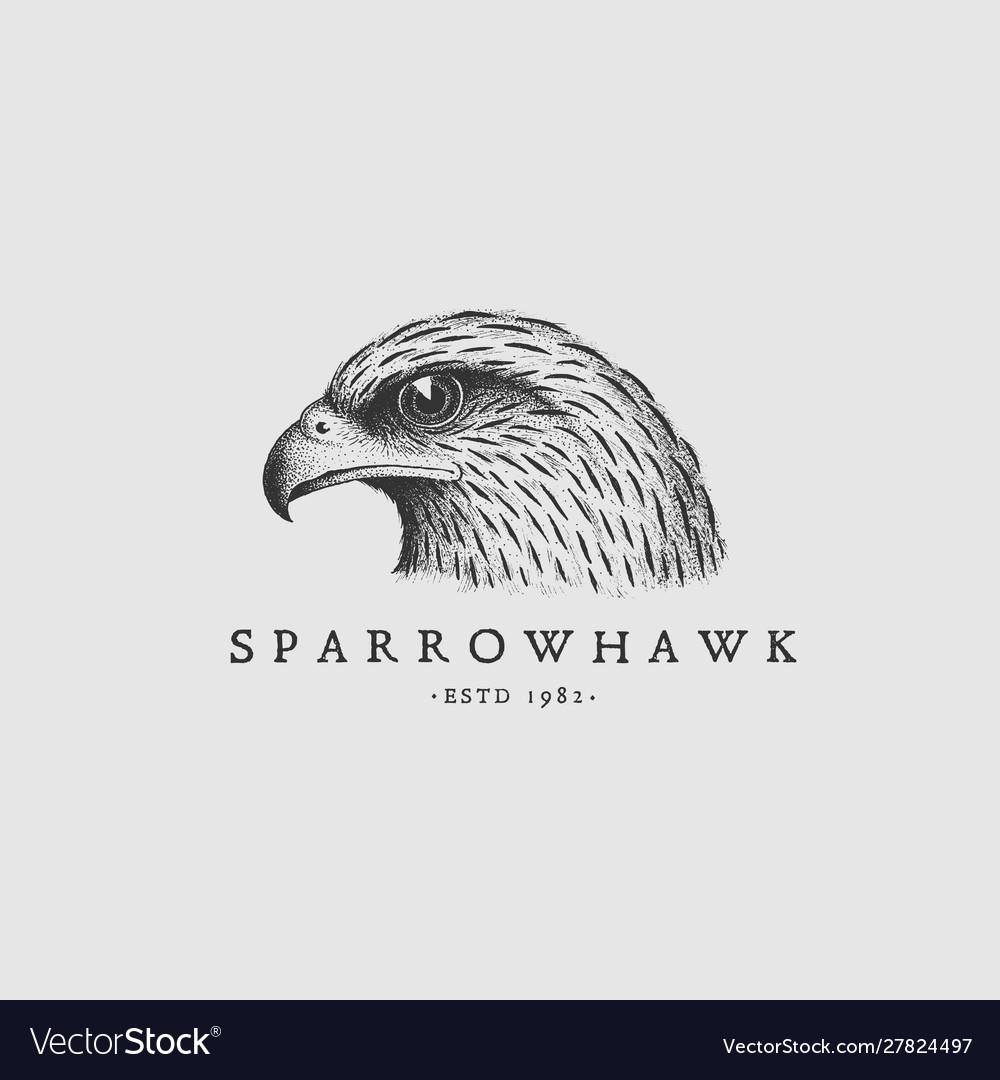Vintage hawk label