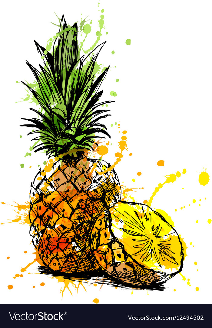 Colored hand sketch pineapple