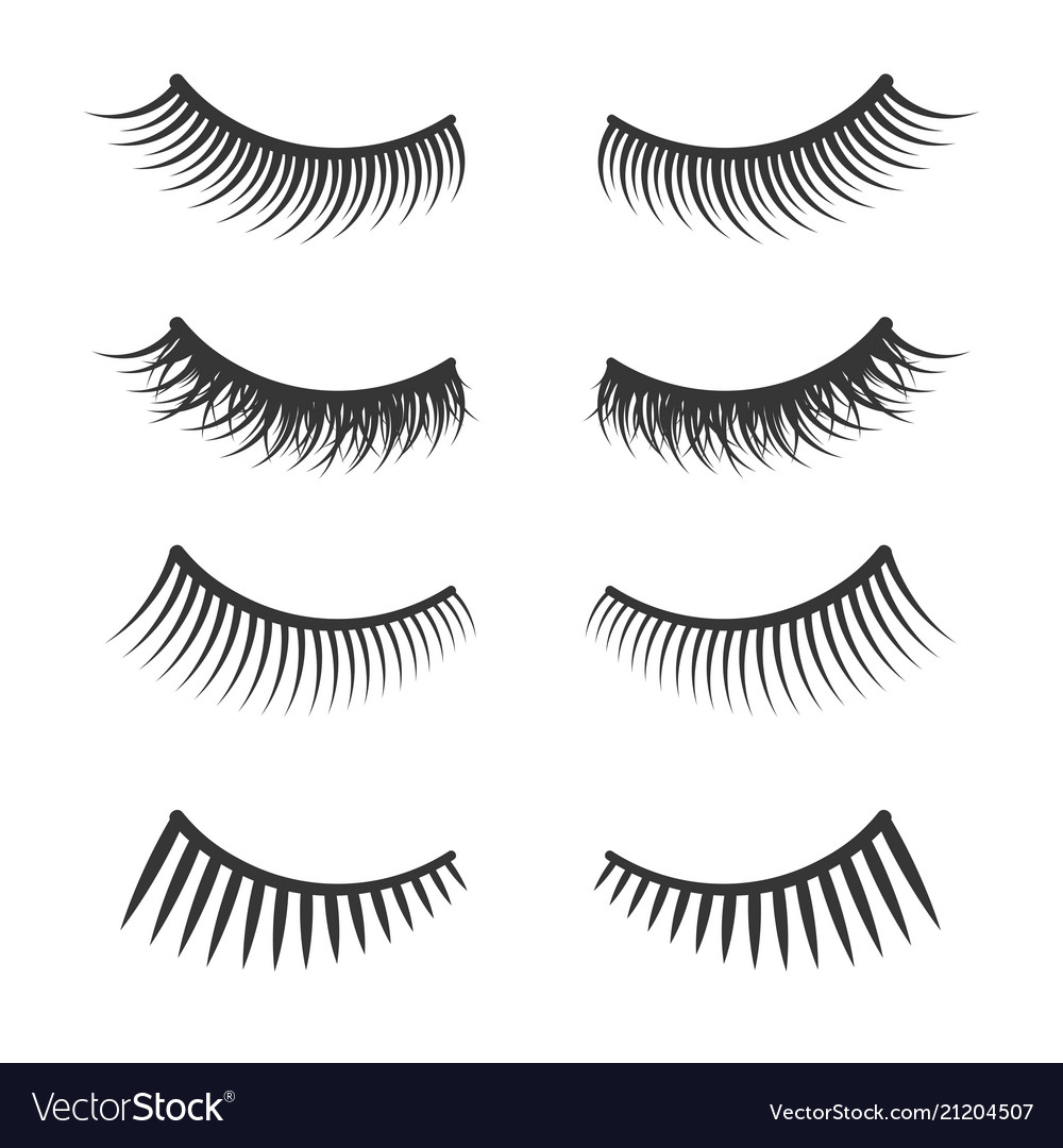 Lashes set on white background