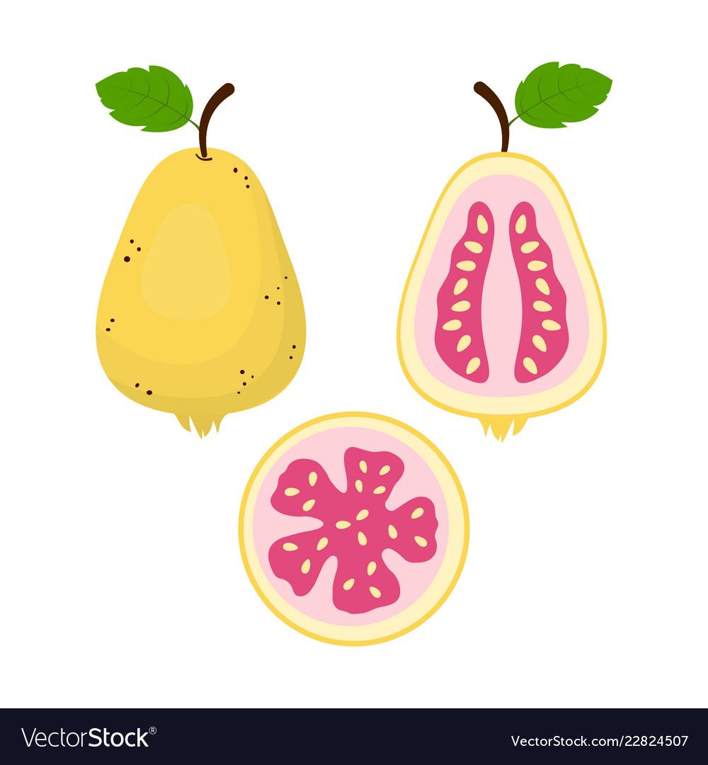 Set of guava fruit