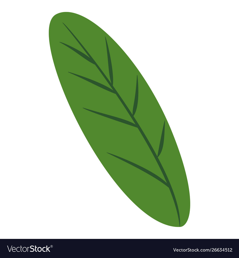 Green banana leaf icon cartoon style