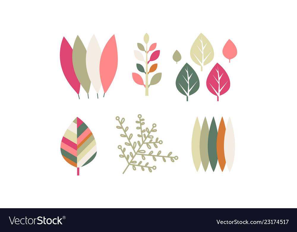 Flat set of colorful leaves botanical