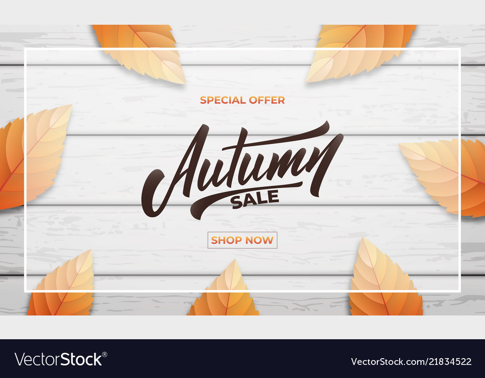 Autumn sale background layout design autumn