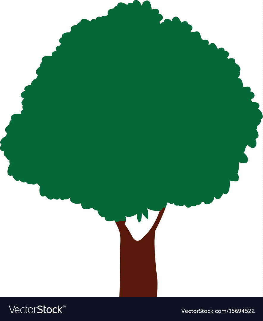 Green tree natural foliage forest icon