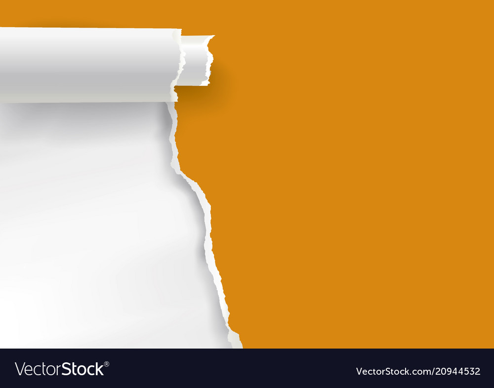 Orange Ripped Paper Background Banner Template Vector Image