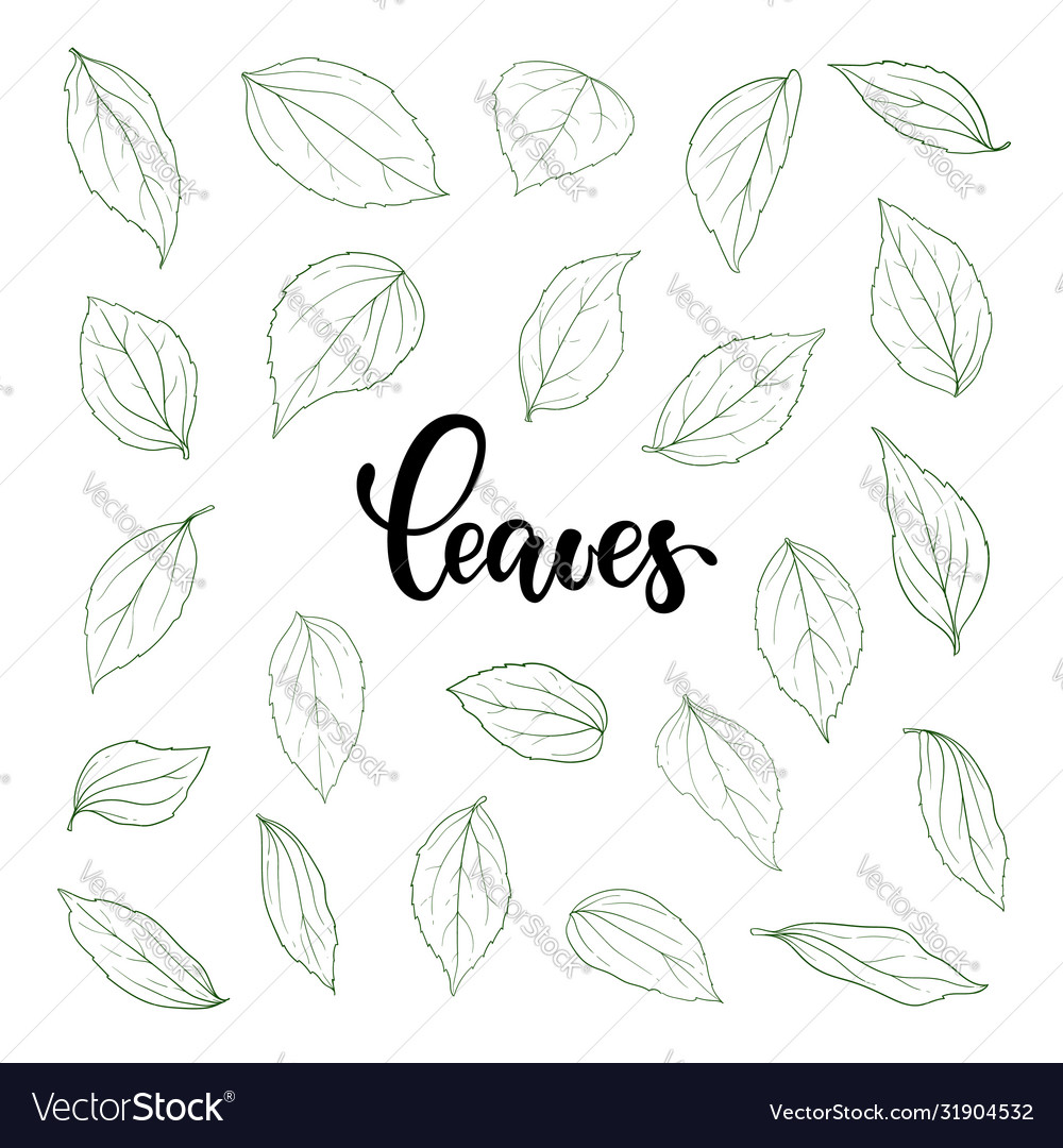 Set outline leaves monochrome black and white