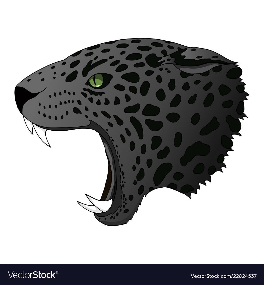 cougar life free credits