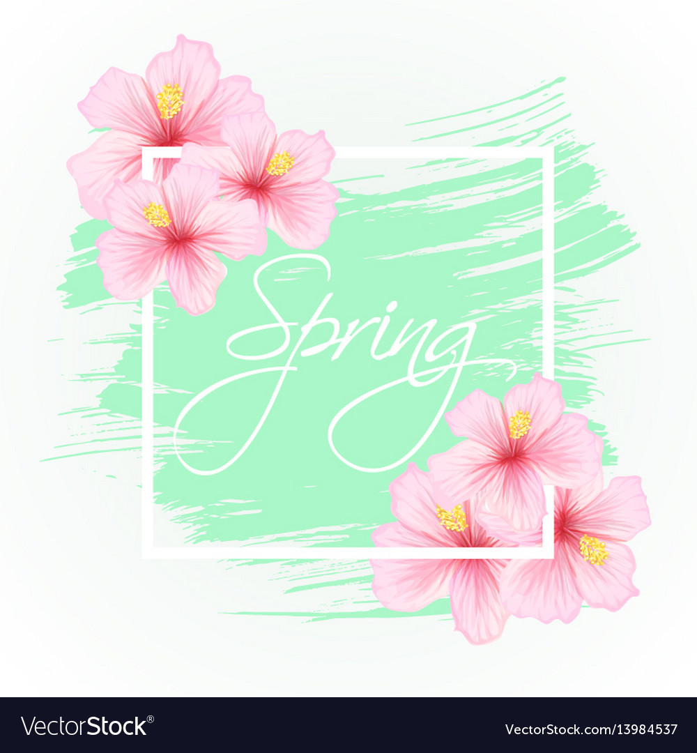 Gibiscus flowers with spring lettering