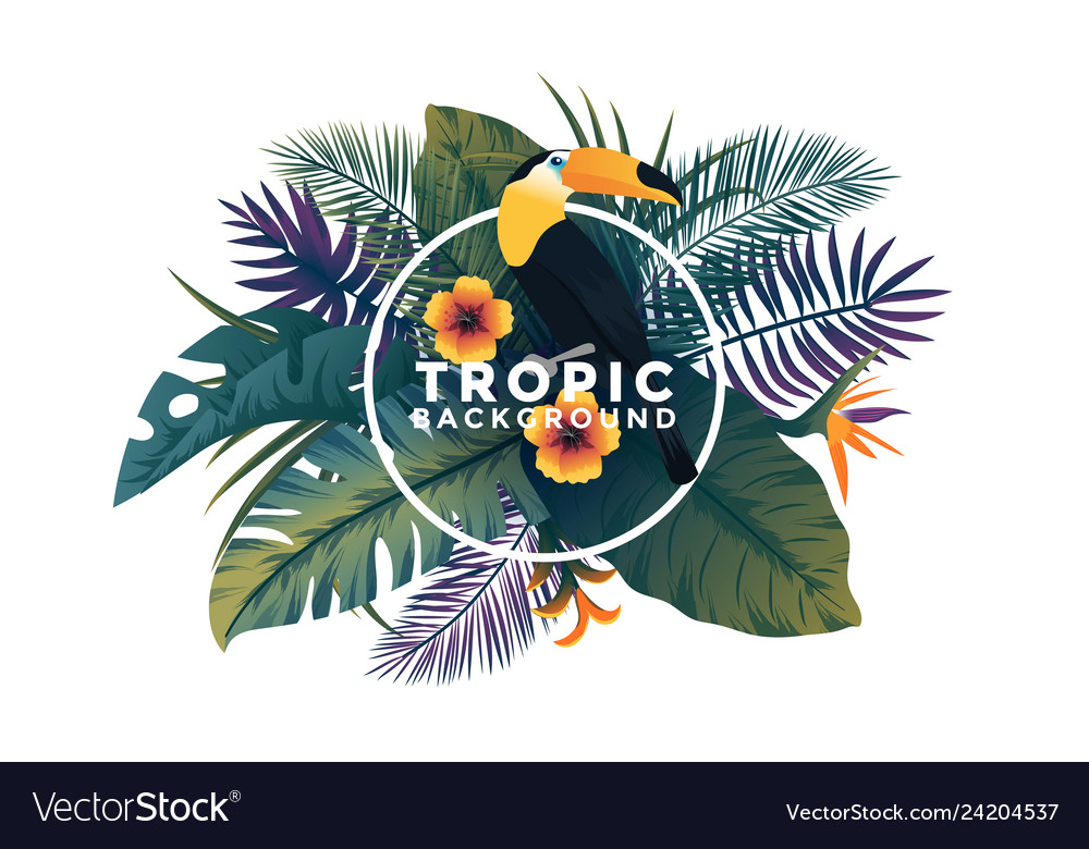 Tropical background with frame - bird and plants