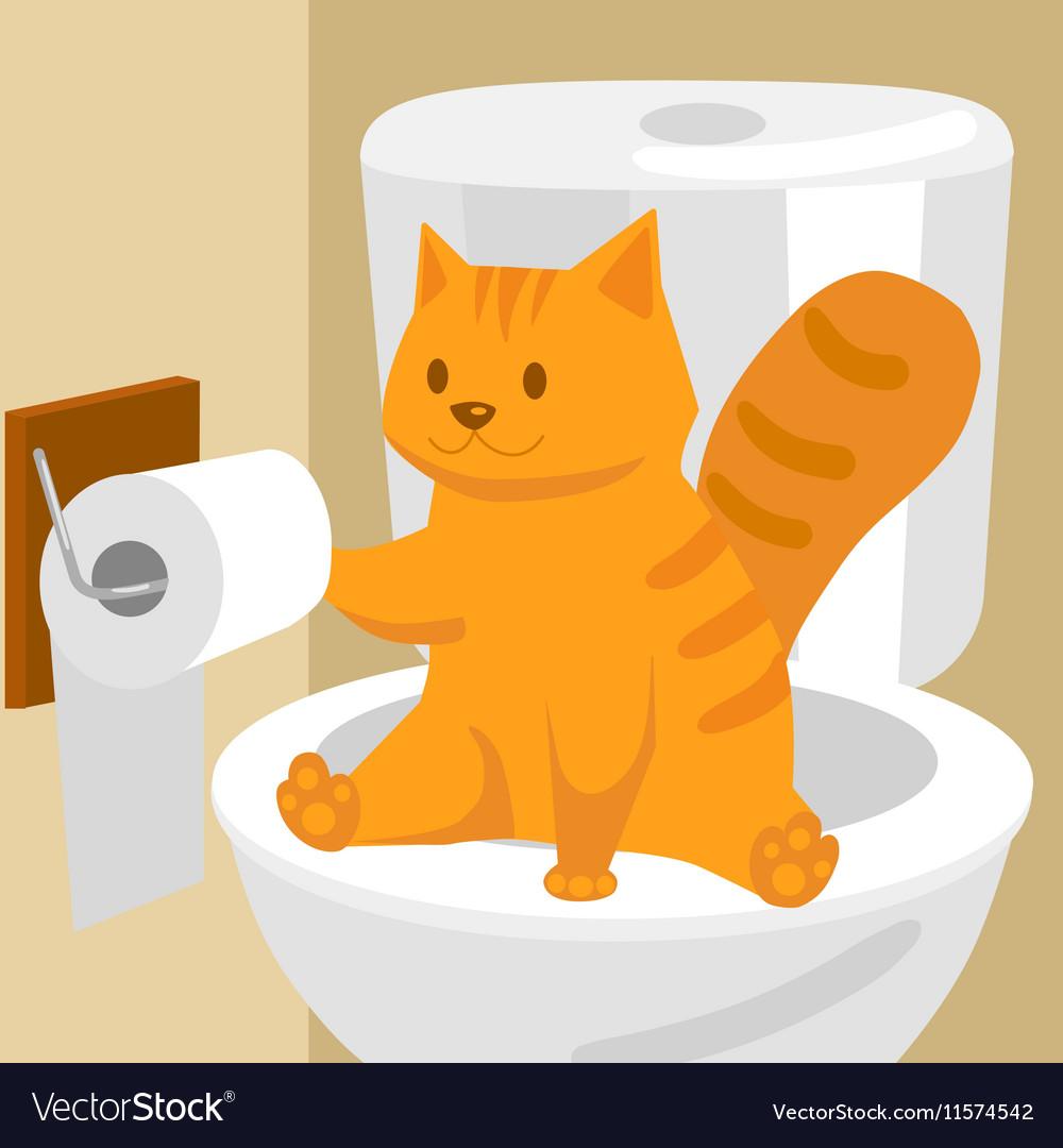 Ginger cat on toilet cartoon vector image
