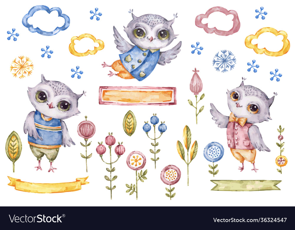 Cute watercolor owls boy collection floral