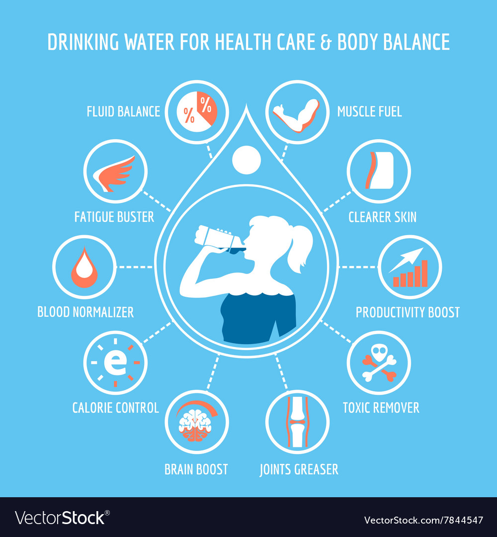 drinking water for health care infographic vector image