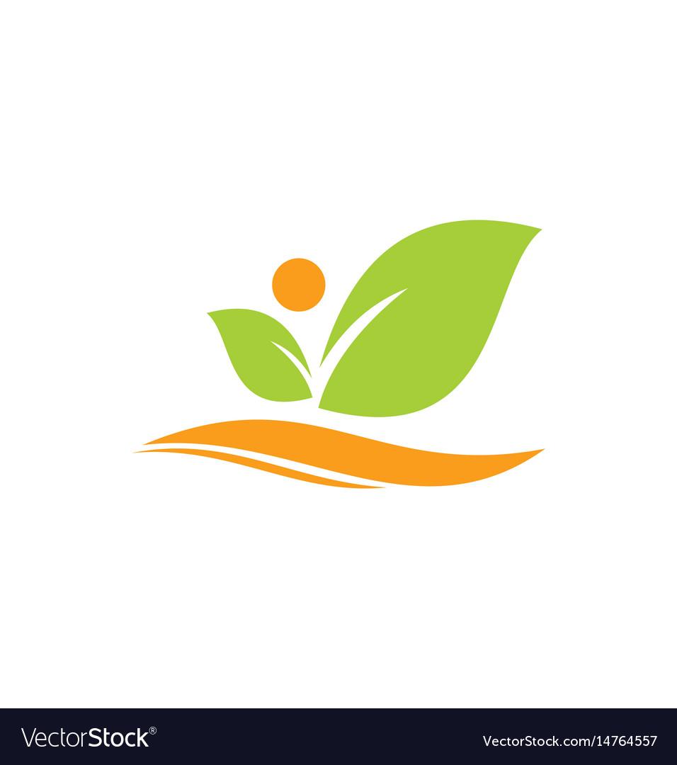 Leaf beauty organic logo