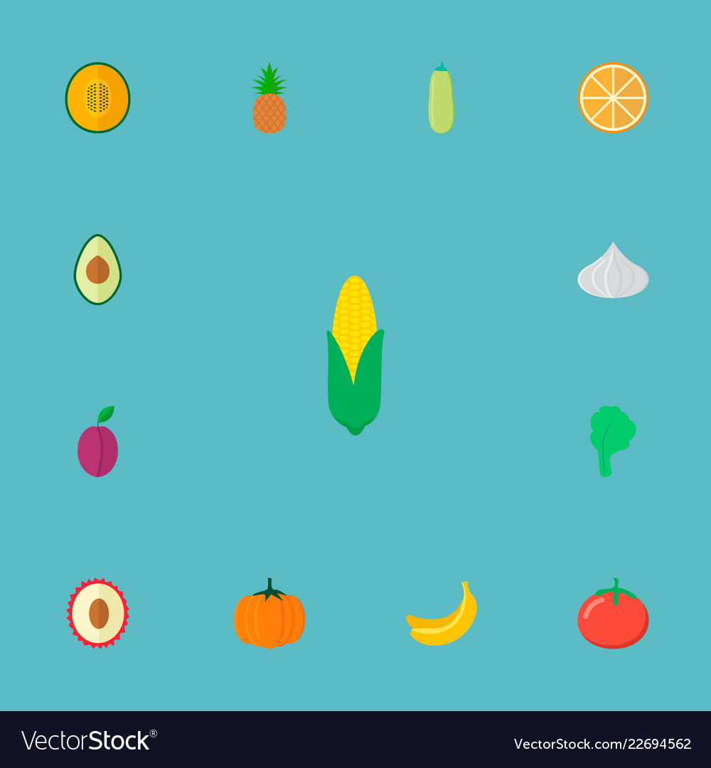 Set of berry icons flat style symbols with lychee