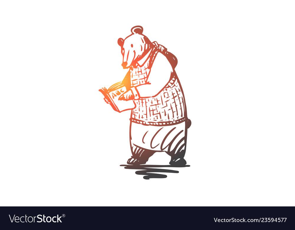 School animal bear read book concept hand