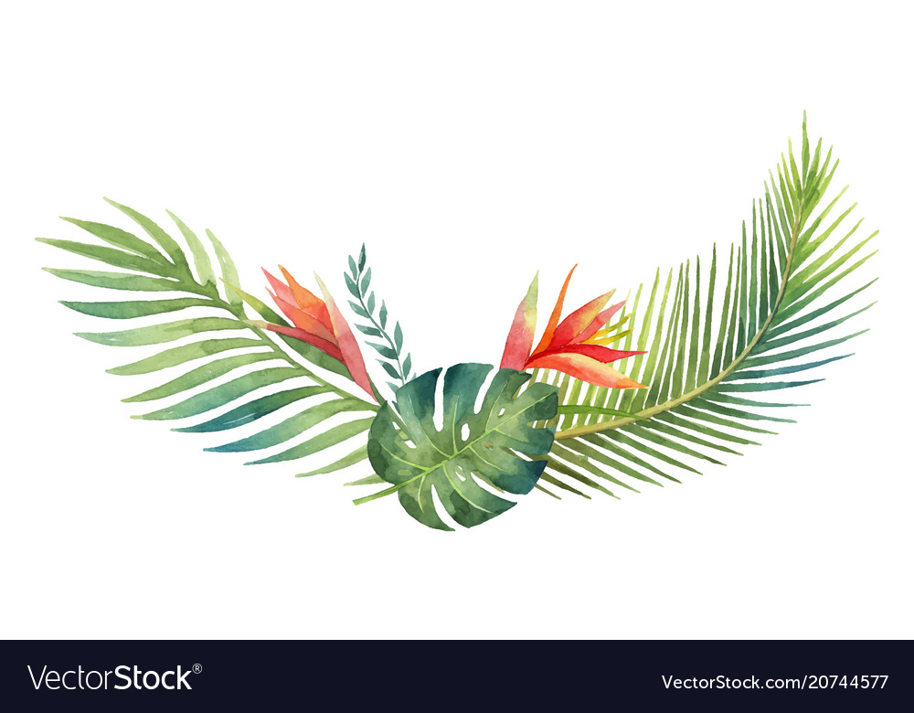 watercolor wreath tropical leaves and royalty free vector