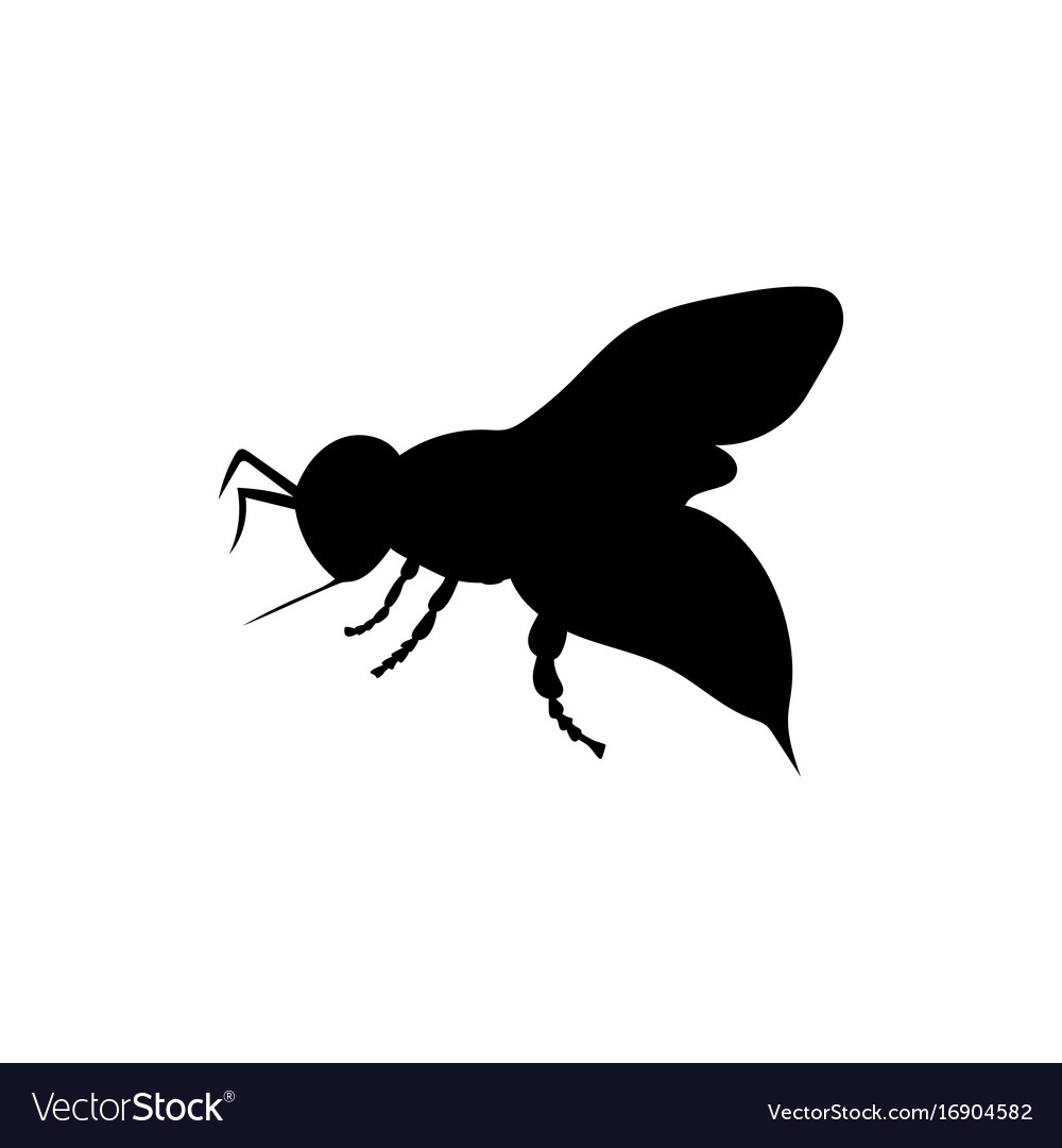 Bee insect black silhouette animal vector image