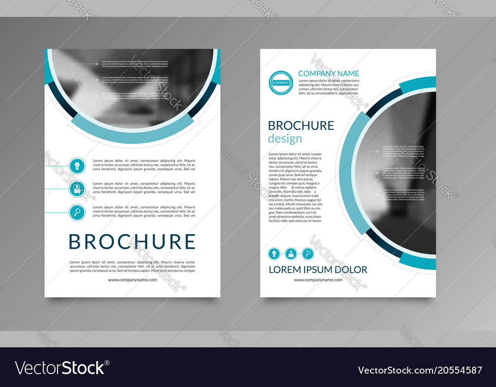 flyer brochure layout template a4 size royalty free vector