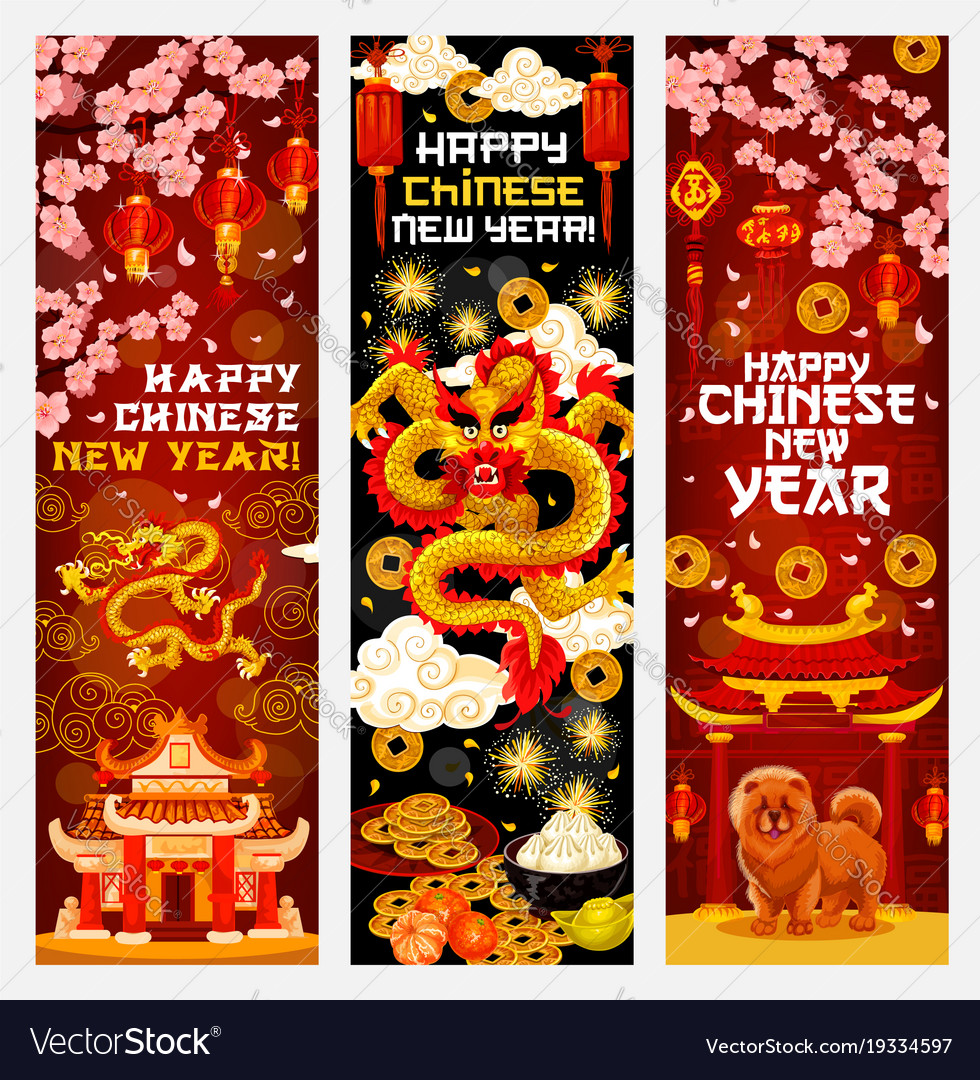 chinese new year banner with spring festival decor vector image