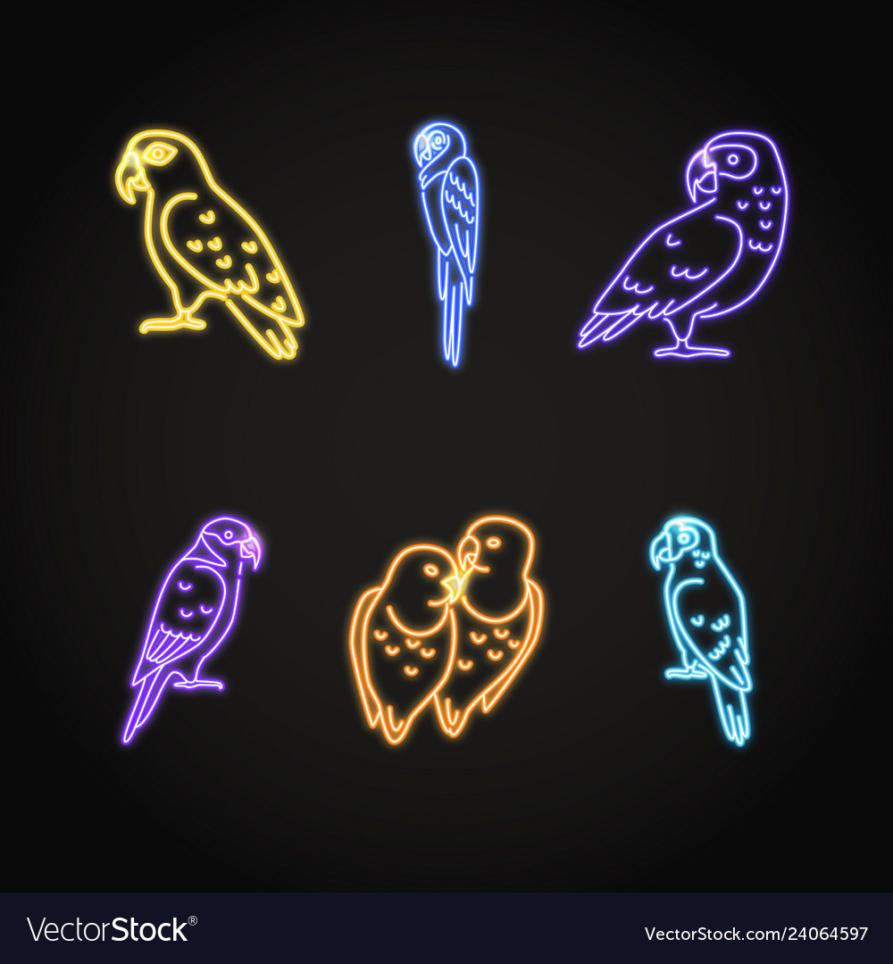 Parrot icons set in glowing neon style
