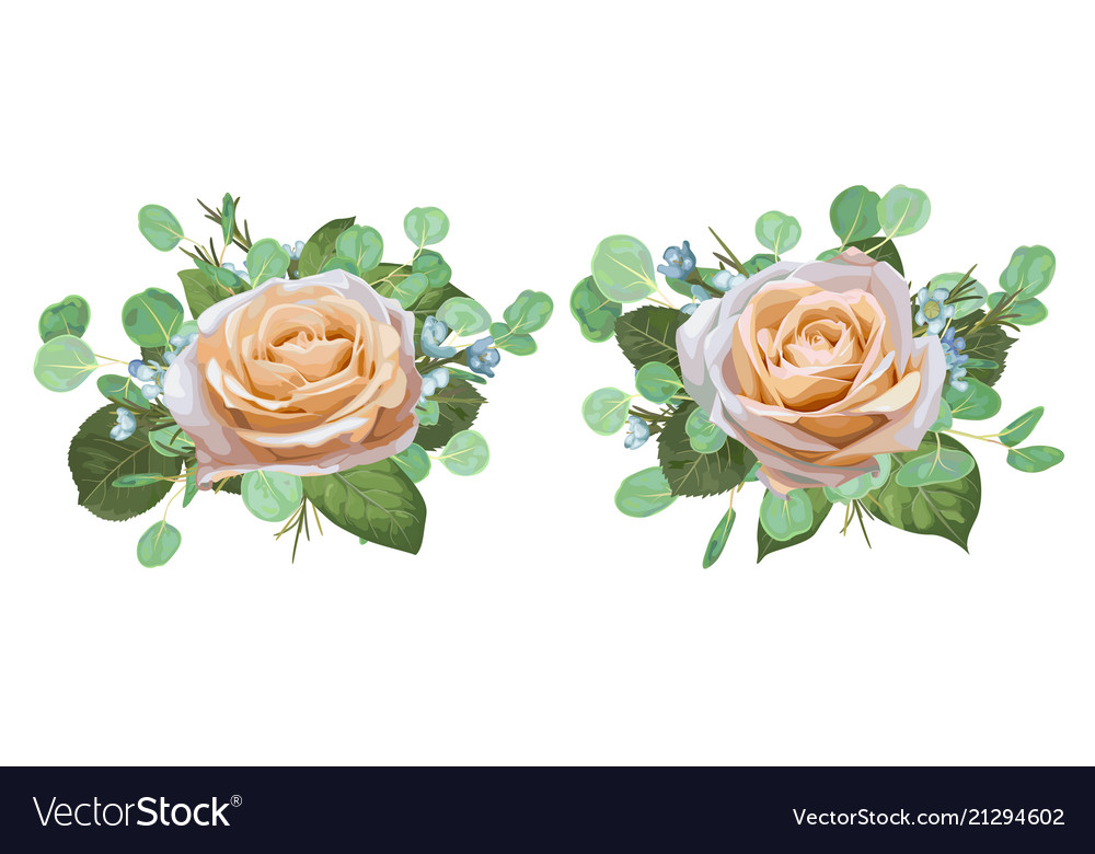 Set of watercolor beautiful roses with