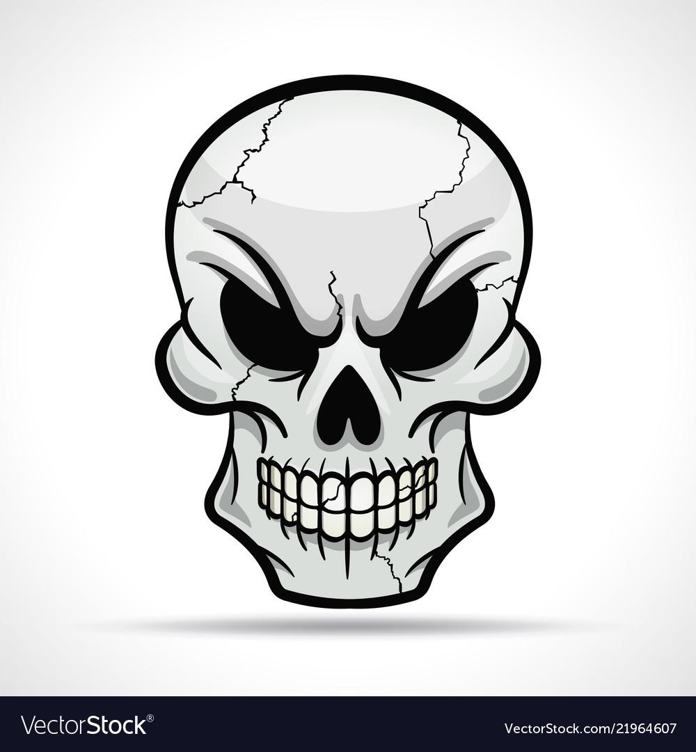 Skull on white background