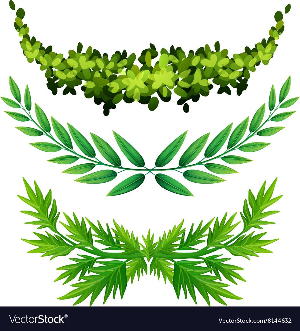 Plant design for decoration vector image