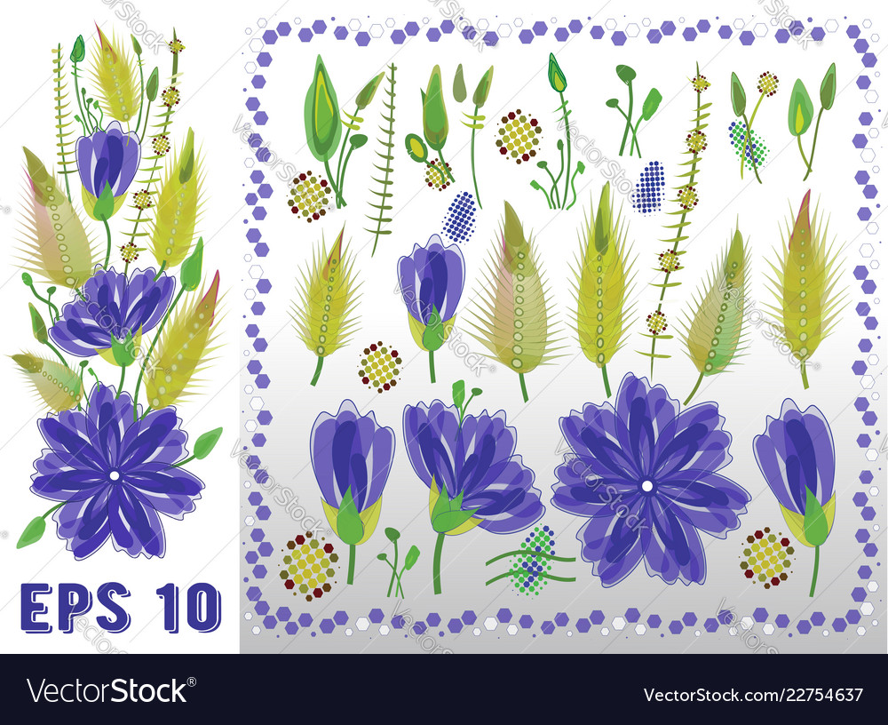 Floral elements set with violet daisy type