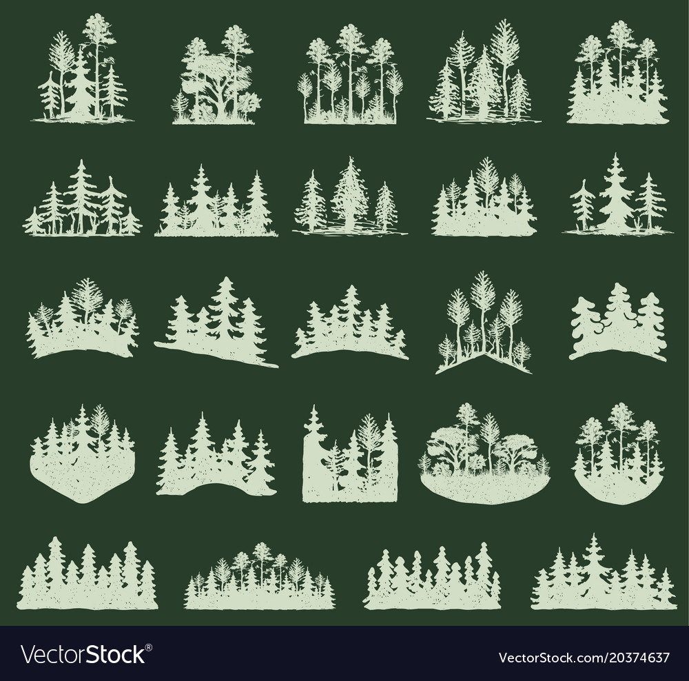 Forest tree silhouette outdoor travel green vector image