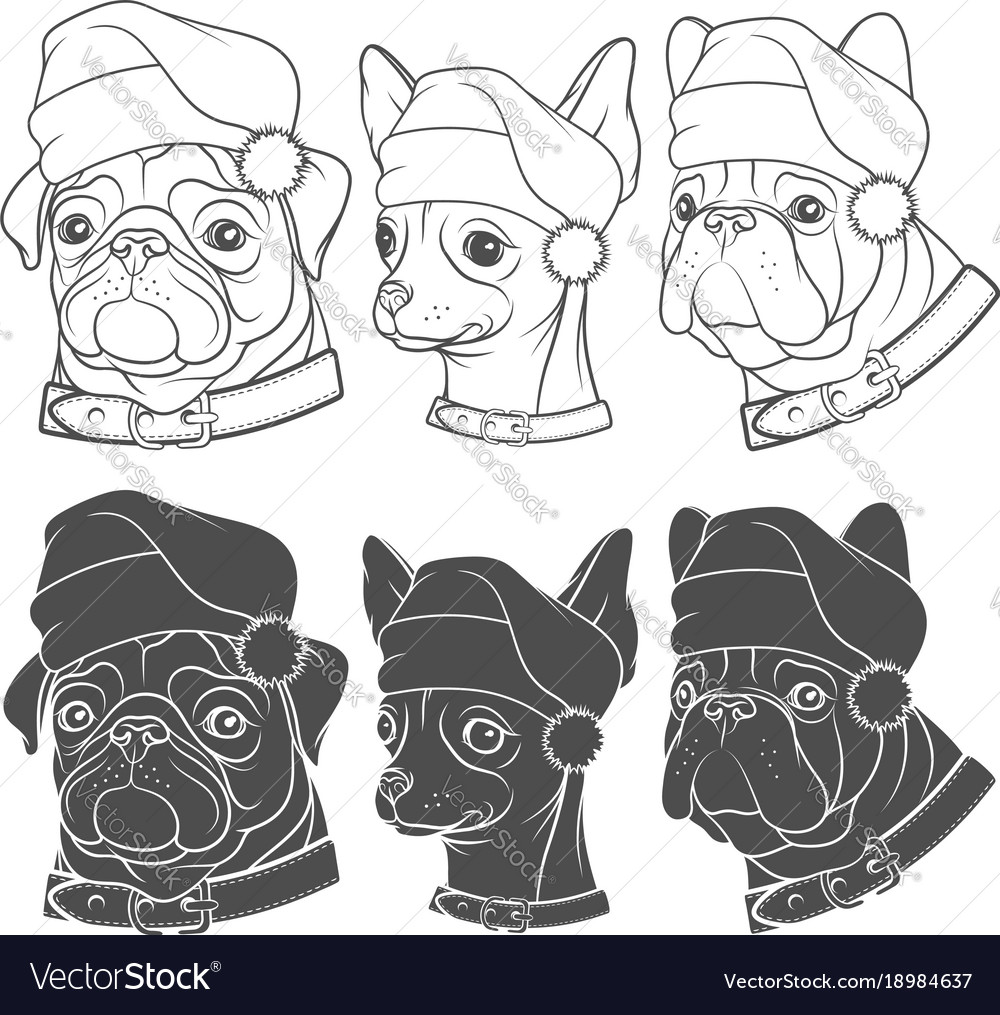 Set with dogs in christmas hats