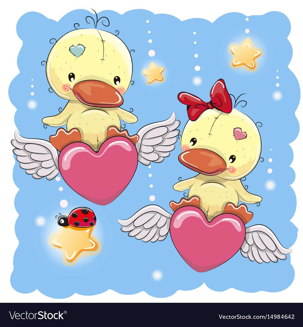 Cute lovers ducks