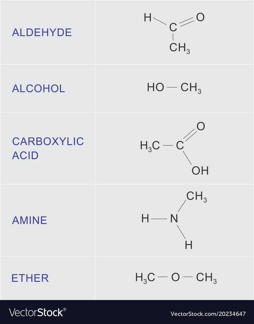 Organic chemical functions