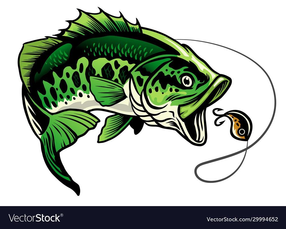 Bass Fish Catcing Fishing Lure Royalty Free Vector Image