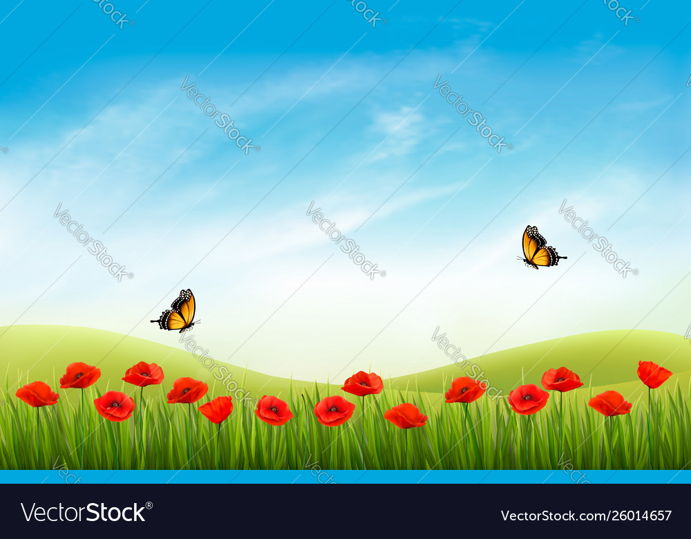 Summer nature landscape background with red