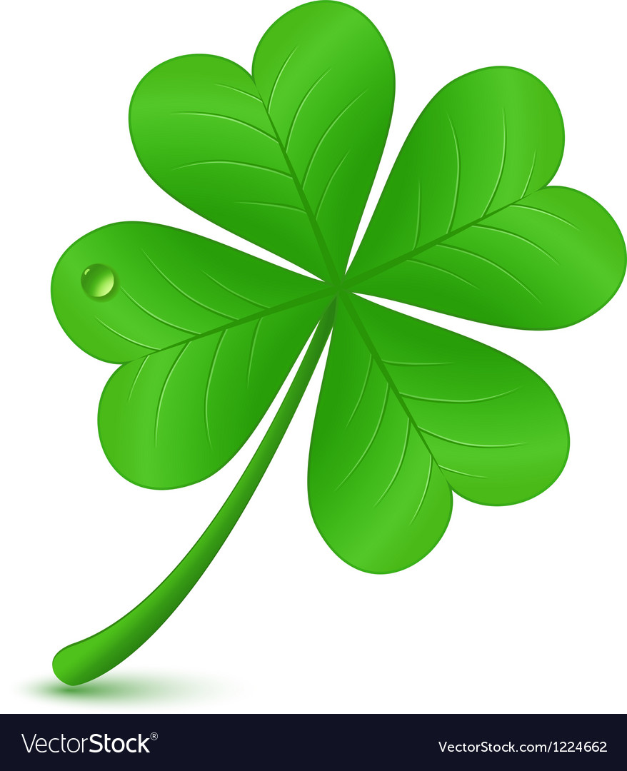 Four leaf clover St Patricks day symbol